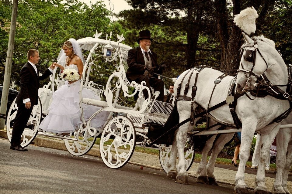 carrozza-sposi-matrimonio-sposo-sposa-carrozza bianca-cavalli bianchi-cocchiere